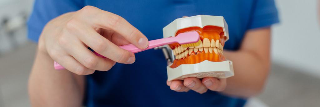 Eine regemäßige Prophylaxe ist wichtig für eine gesunde Mundhygiene